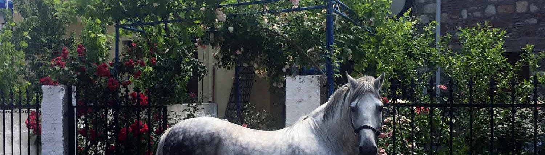 Malreise Griechenland
